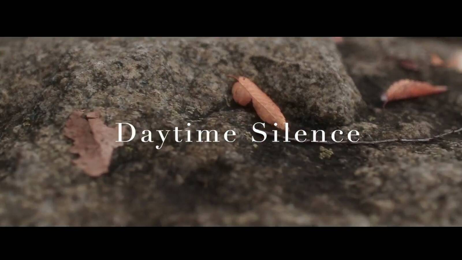 Dailytime silence